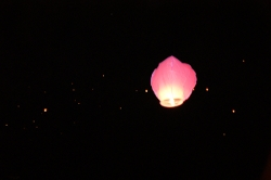 HOTELS à VISERBELLA: La nuit Rose